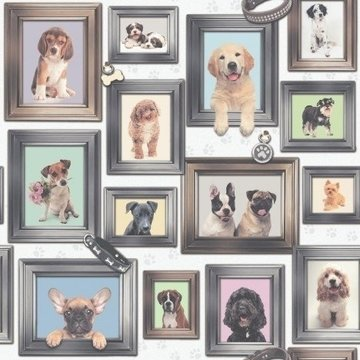 Honden behang 272703