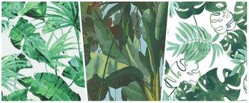 Bladeren - Bomen & Natuur Bestsellers