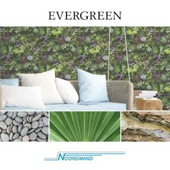 Noordwand Evergreen