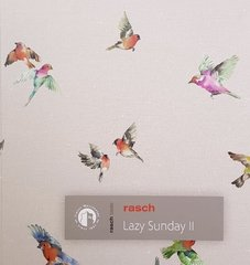 Rasch Lazy Sunday 2