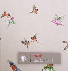 Rasch Lazy Sunday