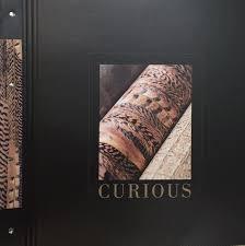 BN Curious