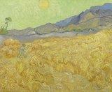 fotobehang BN Wallcoverings Van Gogh 30544 Korenveld met maaier_