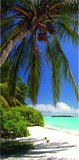 Dutch DigiWalls Fotobehang 70029 Tropisch strand_