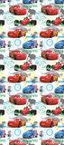 AG Disney Cars WPD9701_