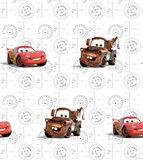 AG Disney Cars WPD9730_