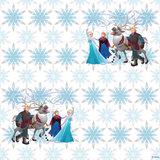 AG Disney Frozen WPD9732_