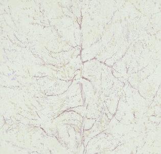 BN Van Gogh behang 17162 The Pink Peach Tree