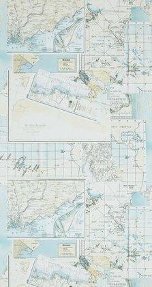 Riviera Maison OCEANS 18390 met gratis vlieslijm