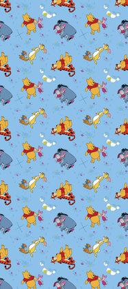 AG Disney Winnie The Pooh WPD9720