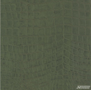Noordwand Couleurs et Matières III 51157504