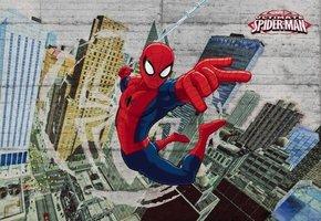 Komar Spider-Man Concrete 8-467