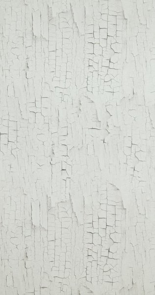 BN Wallcoverings Essentials 218020