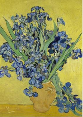 BN Wallcoverings Van Gogh 30545 Irissen (Met Gratis Perfax Lijm!)
