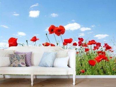 Esta Home Ginger behang PhotowallXL field of poppies 158008