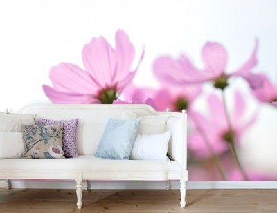 Esta Home Ginger behang PhotowallXL pink cosmos 158009