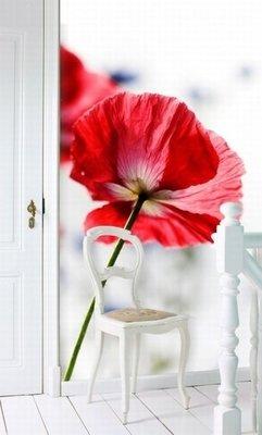 Esta Home Ginger behang PhotowallXL red poppy 158003