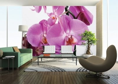 AG Design Fotobehang Paarse Orchidee?n FTS0049