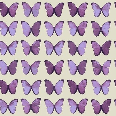 BEHANG 622005 Vlinder