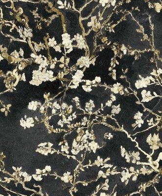van Gogh 17145 (Met Gratis Perfax Lijm!)