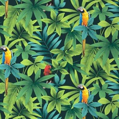 j86404 papegaaien