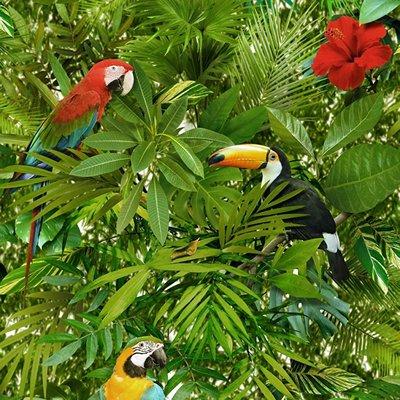 Dutch Faux Semblant behang L123-04 papegaaien kaketoe