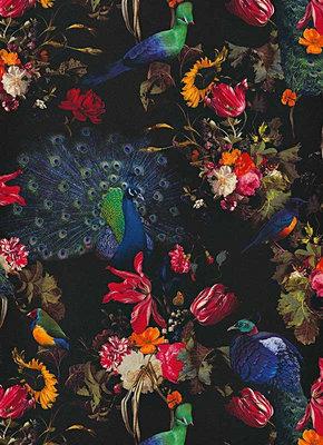Behangexpresse Instawalls 6371-15 Botanisch/Vogels/Pauw/Planten Behang