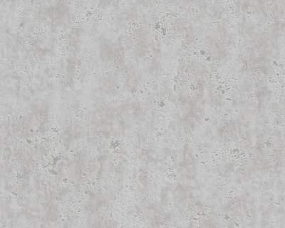AS Creation Beton Behang 36600-4 / 366004