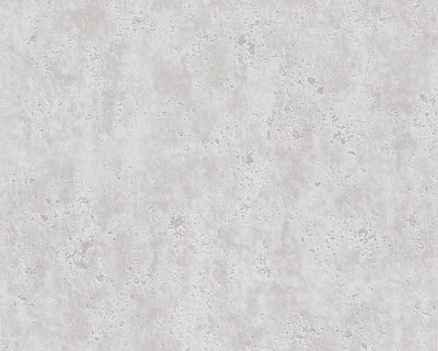 AS Creation Beton Behang 36600-1 / 366001