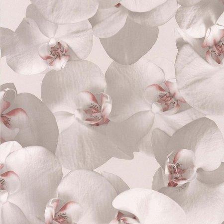 Noordwand Reality II behang 51152103 orchideeen behang