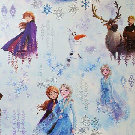 Disney Frozen behang 175501