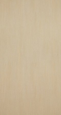 BN Wallcoverings Essentials 217982