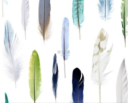 feathers wallpaper XXL 158602