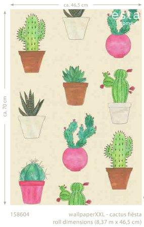 cactus fiesta wallpaper XXL 158604