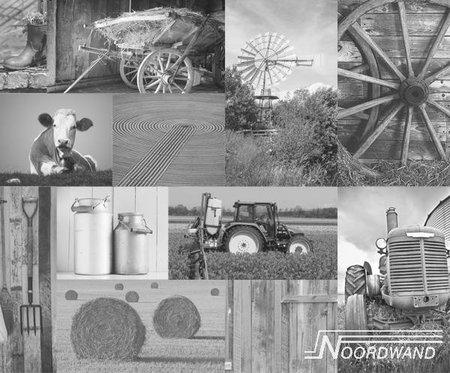 Farm Life 3750002