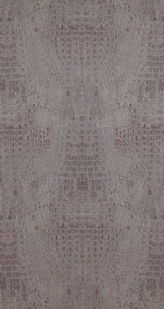 BN Wallcoverings Curious 17952