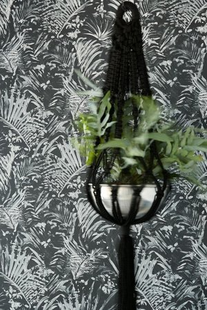 Eijffinger Black & Light 356071 (Met Gratis Lijm!)