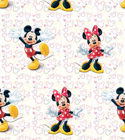 AG Disney Mickey & Minnie WPD9748
