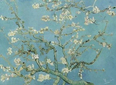 BN Wallcoverings Van Gogh 30548 Amandelbloesem (Met Gratis Perfax Lijm!)