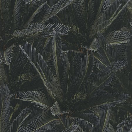 Rasch behang 619973
