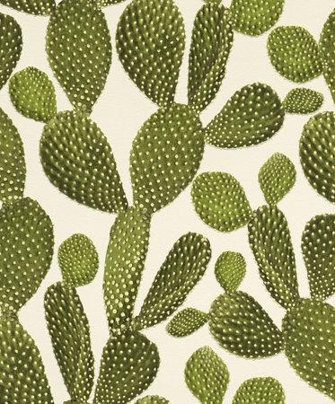 Rasch Freundin II 441000 - Cactus Behang