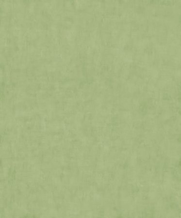 BN Wallcoverings On The Spot 219374