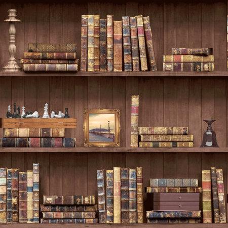 Dutch Wallcoverings Imaginarium boekenkast 11950