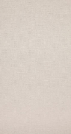 BN Wallcoverings Rise and shine 218975 creme weefsel motief