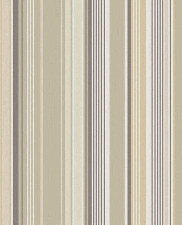 Eijffinger Stripes+ 377110 (Met Gratis Lijm!)