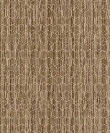 BN Wallcoverings Dimensions 219624 (Met Gratis Lijm!)