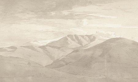 Noordwand Juno 96817