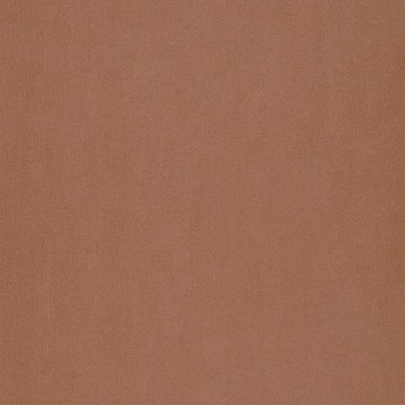Caselio Color Box COBO56353004 met Gratis Lijm