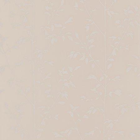 Caselio Shine SHE68571002 met Gratis Lijm
