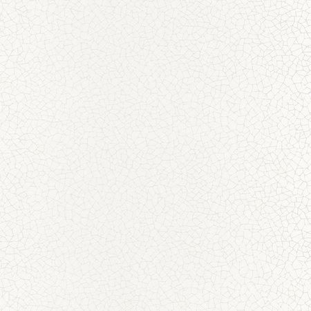 Caselio Shine SHE68590008 met Gratis Lijm